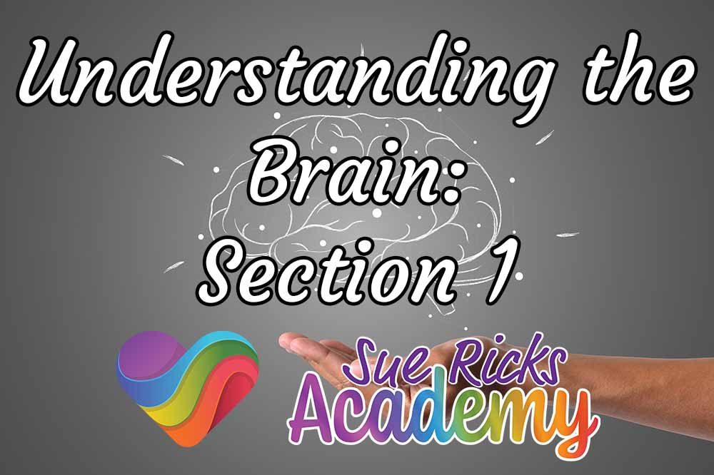 Understanding the Brain - Section 1