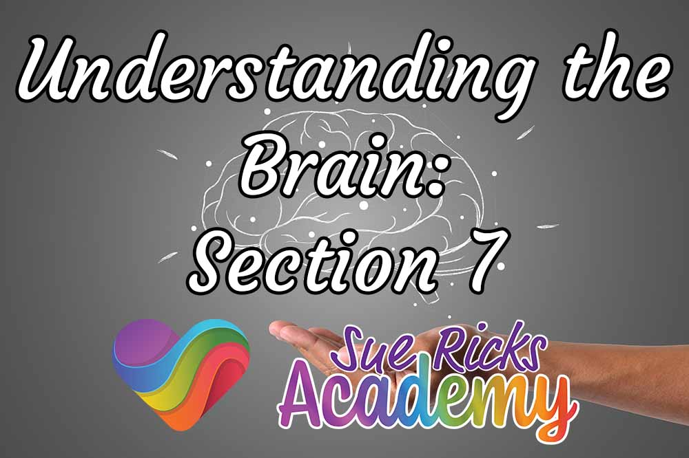 Understanding the Brain - Section 7